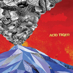 Acid Tiger- S/T LP (Converge)