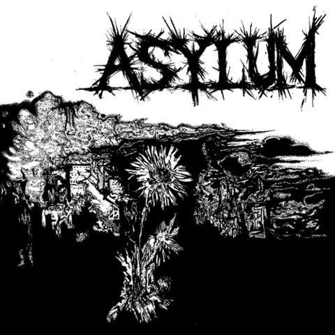 "Asylum- S/T 7"" (Sale price!)"