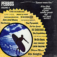 V/A- Pebbles Vol 4 (Original Artyfacts From The First Punk Era, Summer Means Fun) LP