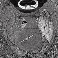 Iron Lung- Sexless//No Sex LP (Color Vinyl)