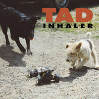 TAD- Inhaler LP (Tan Black & Red Swirl Vinyl) (July 17th, 2021 Record Store Day Release)