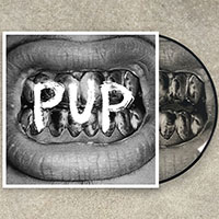 PUP- S/T LP (Pic Disc)