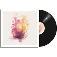 Big/Brave- A Gaze Among Them LP