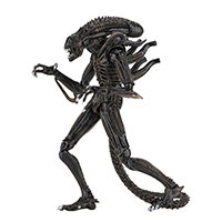 "Aliens- Ultimate Alien (1986) 7"" Figure by NECA"