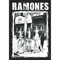Ramones- CBGB Pic Fabric Poster/Wall Tapestry/Flag