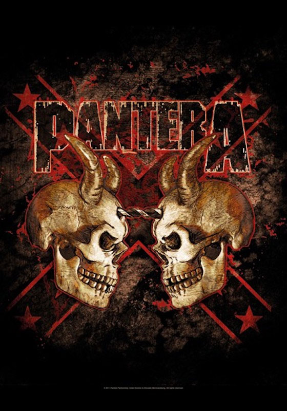 Pantera- Double Skull Fabric Poster/Wall Tapestry/Flag