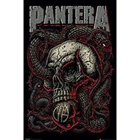 Pantera- Snake Eye Poster