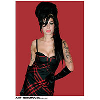 Amy Winehouse- Dublin 2007 poster