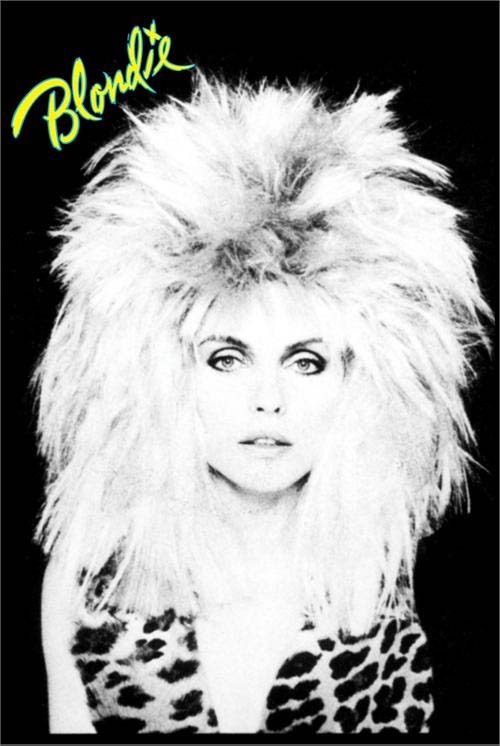 Blondie- Hair poster (A4)
