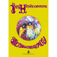 Jimi Hendrix Experience- Are You Experienced Fabric Poster/Wall Tapestry