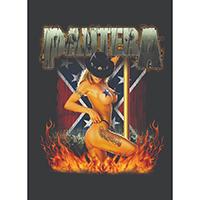 Pantera- Southern Girl Fabric Poster/Wall Tapestry