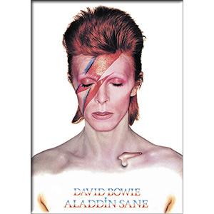 David Bowie- Aladdin Sane magnet