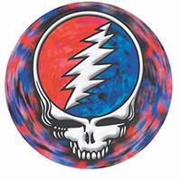 Grateful Dead- Spinning Skull magnet