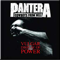 Pantera- Vulgar Display Of Power magnet