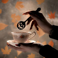 Haunted Hallows Tea Spoon by Lively Ghosts - Black