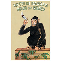 Chimp With Joint poster