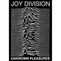 Joy Division- Unknown Pleasures poster