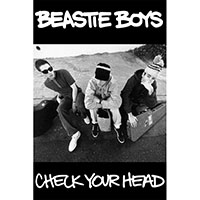 Beastie Boys- Check Your Head poster