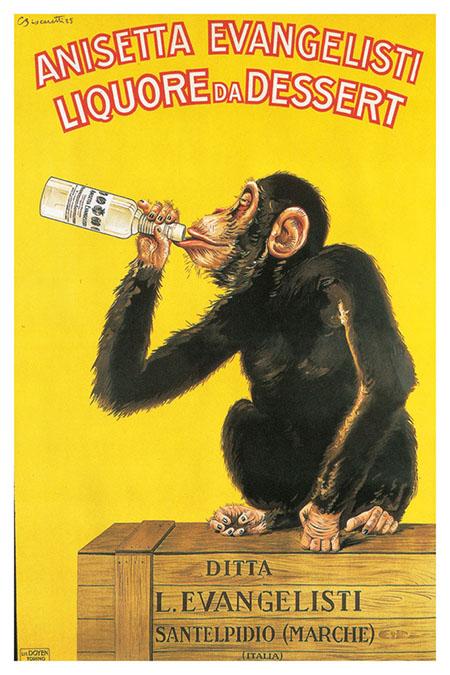 Anisetta Chimp poster