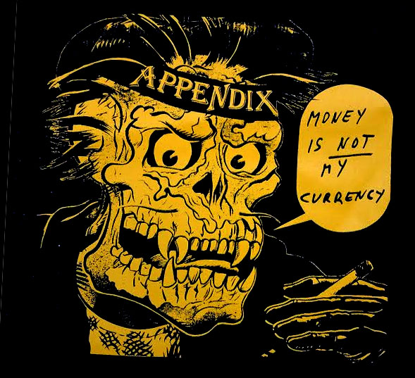 Appendix- Money Is Not My Currency back patch (bp480)