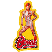 David Bowie- Glam Pic embroidered patch (ep519)