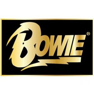 David Bowie- Logo Stick Back Enamel Pin (MP227)