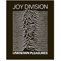 Joy Division- Unknown Pleasures Enamel Pin (mp107)