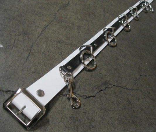 5 Ring Bondage Belt by Ape Leather- White With Black Strip