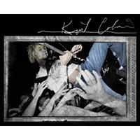 Kurt Cobain- Crowd Surf sticker (st338)