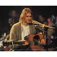 Kurt Cobain- Cardigan & Guitar sticker (st341)