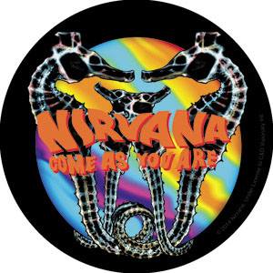 Nirvana- Come As You Are sticker (st663)