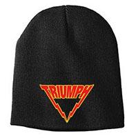 Triumph- Logo embroidered on a black beanie