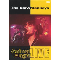 Blow Monkeys- Animal Magic DVD (UK Import!) (Sale price!)