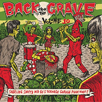 V/A- Back From The Grave Vol. 10 LP