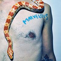 Marvelous Darlings- Single Life LP (Fucked Up)