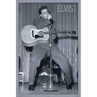 Elvis Presley- Live poster