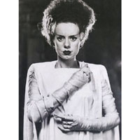 Bride of Frankenstein - Elsa Lanchester - Half Body with Arms on Chest- Fine Art Print by Annex