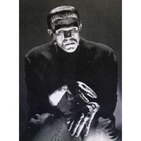 Frankenstein - Deep Thoughts - Boris Karloff - Full Body Fine Art Print by Annex