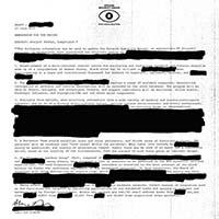 Desaparecidos- Payola LP (Conor Oberst)