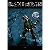 Iron Maiden- Ben Breeg Fabric Poster
