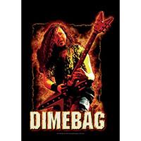 Dimebag Darrel- Fire Fabric Poster (Pantera)