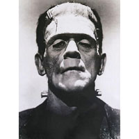 Frankenstein - Boris Karloff - Monster Head Portrait- Fine Art Print by Annex