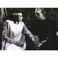 The Bride & Frankenstein- Perfect Match - Fine Art Print by Annex
