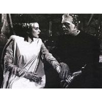 The Bride & Frankenstein- Perfect Match - Fine Art Print by Annex