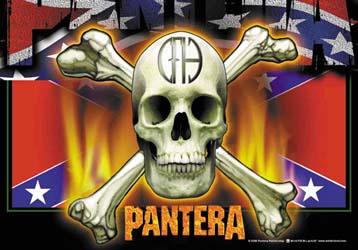 Pantera- Flag & Skull Fabric Poster/Wall Tapestry
