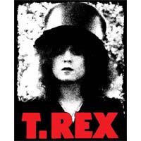 T Rex- Slider sticker (st329)