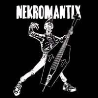 Nekromantix- Coffin Bass sticker (st667)